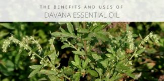 davana essential oil uses