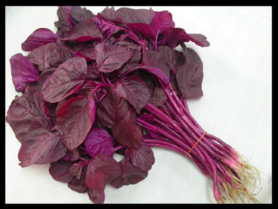 health benefits of red spinach