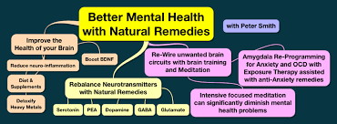 Natural Treatments For Mental Illness