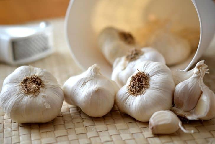 garlic juice strain