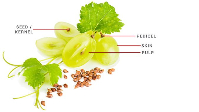 grapeseed oil for acne
