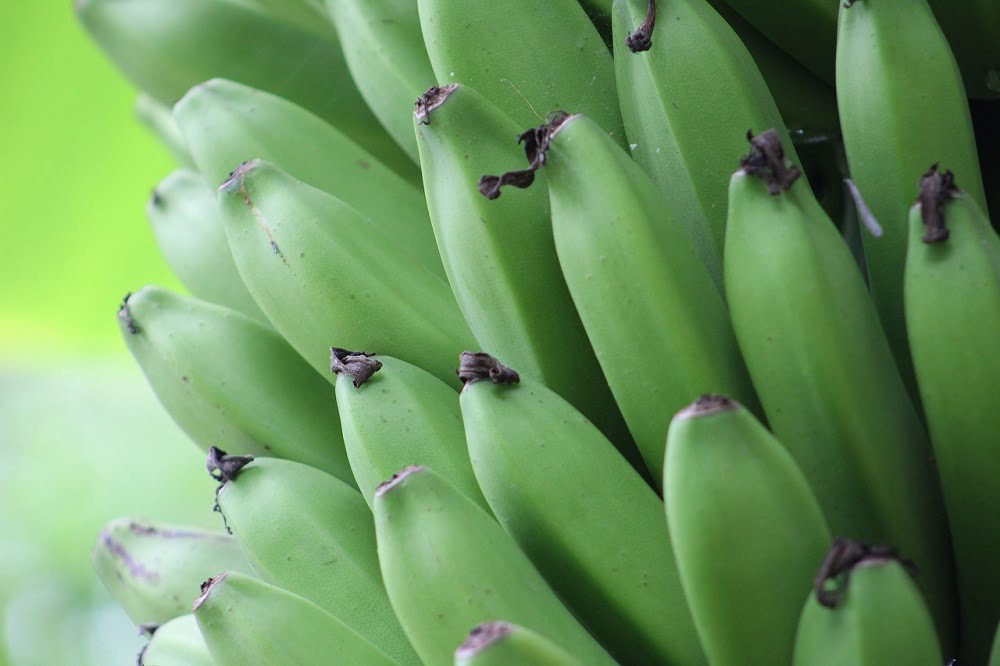 green banana recipes