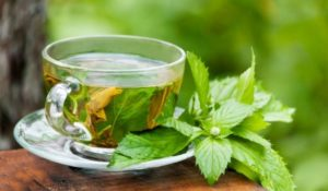 Health benefits of green tea, bone cancer