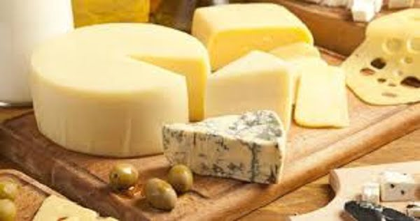 health benefits of cheese for kids