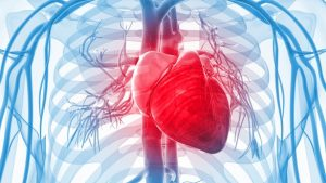heart disease types and symptoms