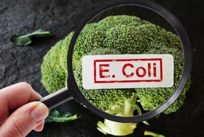 how do you get e coli