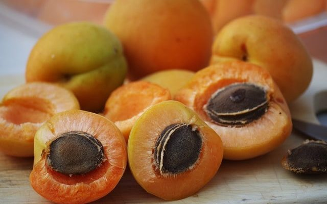 how to eat apricot seeds