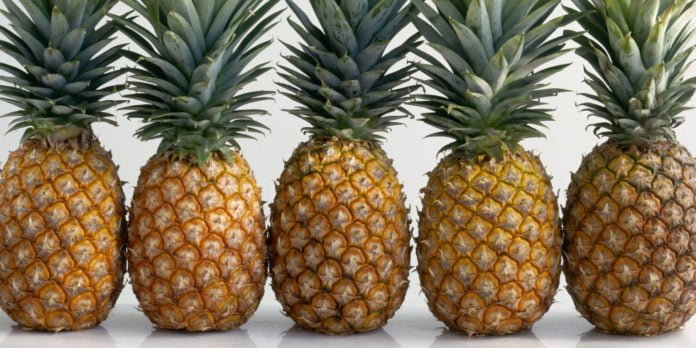 pineapple, pineapples