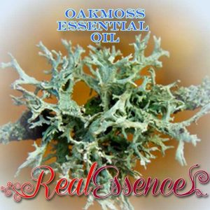 oak moss essential oil health benefits