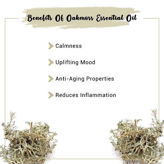 Oakmoss Essential Oil
