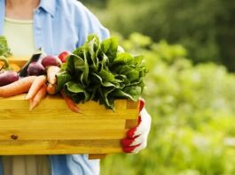 organic food uses for health