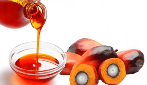 palm kernel oil for hair