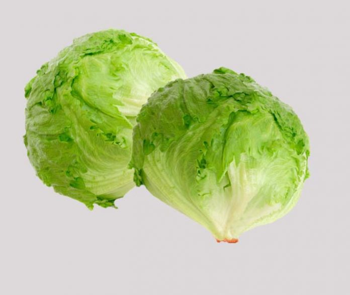 lettuce health benefits