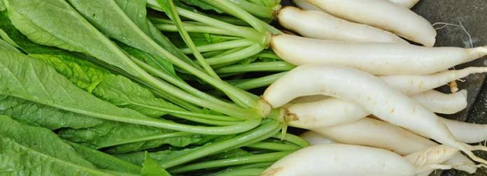 radish greens nutrition info