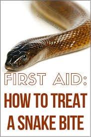 snake bite treatment home remedy
