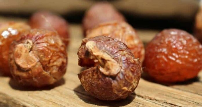 soap nuts review