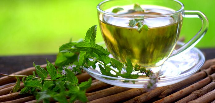 """Avantages pour la santé du thé à la menthe """"title ="""" thé à la menthe"""