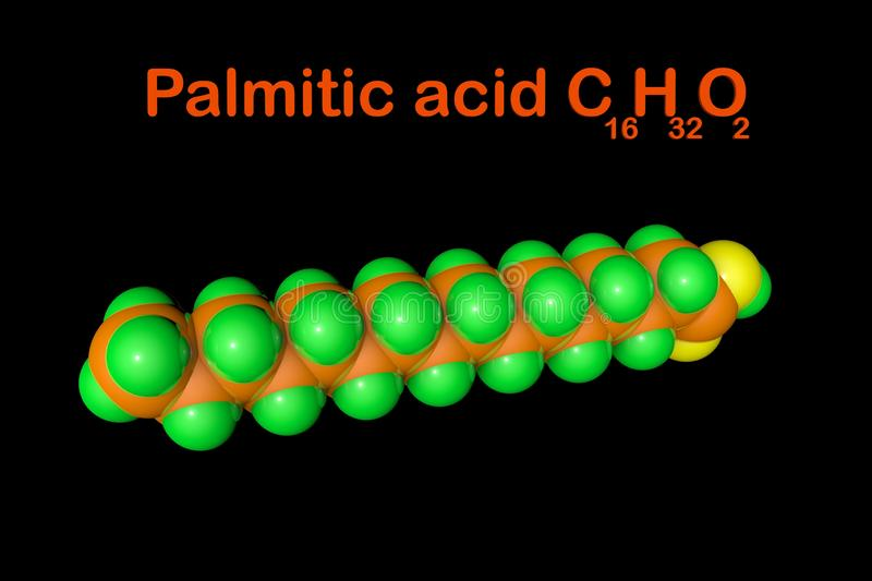 Health benefits of palmitic acid
