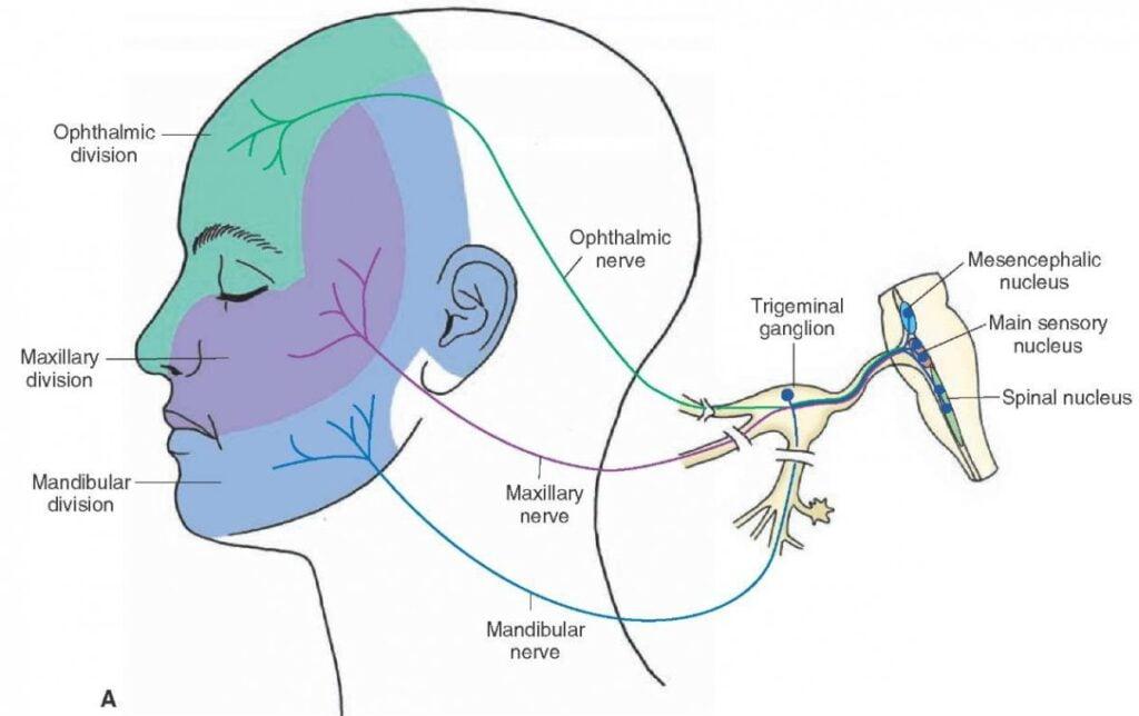 trigeminal neuralgia foods to avoid